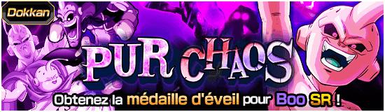 Dragon Ball Z Dokkan Battle Pur chaos
