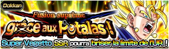 Dragon Ball Z Dokkan Battle Fusion Suprême