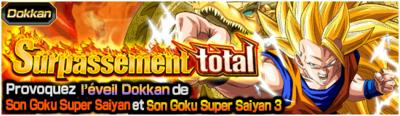 Dragon Ball Z Dokkan Battle Surpassement Total